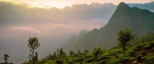 viaggi-in-india-1
