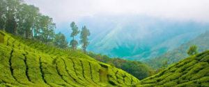 viaggi-in-india-4